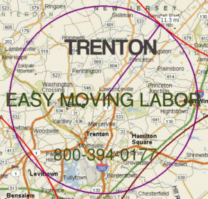 Get pro moving help in Trenton.